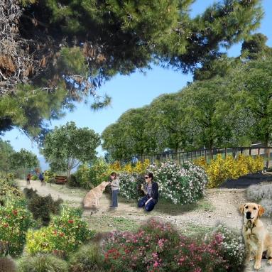 Working for the renaturation area of Monte Urpinu (Cagliari) - collaboration with Studio Tecnico Marras Gianfranco + Cooperativa Primavera 83